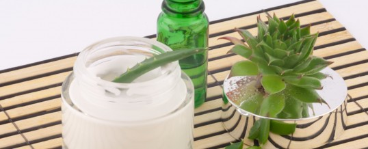 Seriously – Aloe Vera Whole Leaf Extract May be a Prop 65 Chemical